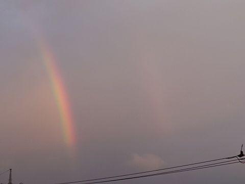 エモい 虹の画像(プリ画像)