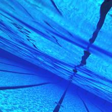 保存はいいね👍加工再配布はコメント💬の画像(水泳に関連した画像)