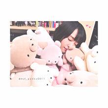 yui aragaki ◟̆◞̆♡の画像(bearに関連した画像)