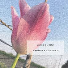 恋の画像(恋愛/失恋/好きに関連した画像)