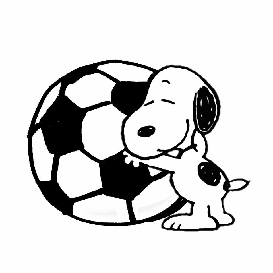 サッカーの画像 p1_18