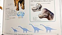 恐竜🦕の図鑑♥️の画像(図鑑に関連した画像)