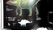 恐竜🦕の図鑑💙 プリ画像