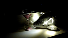 イルカと砂時計⏳️の画像(時計に関連した画像)