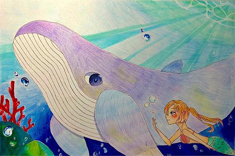 海。の画像(プリ画像)