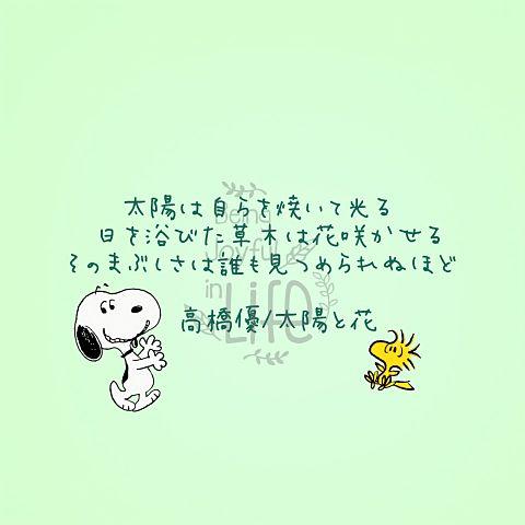 スヌーピー&歌詞画&高橋優の画像(プリ画像)