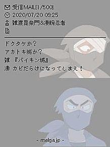 雑渡昆奈門&凄腕忍者シリーズの画像(凄腕忍者に関連した画像)