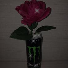 Black Roseの画像(Darkに関連した画像)
