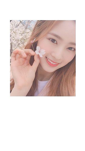 cherry bullet の画像(プリ画像)