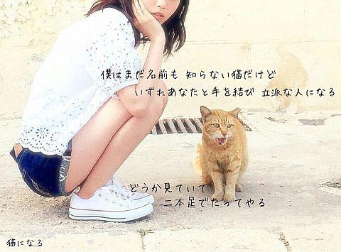 豊崎愛生の画像 プリ画像
