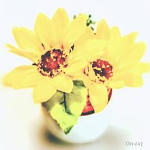 造花🌼 プリ画像