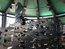 ニモ&フレンズ・シーライダーの画像(ファインディング ドリーに関連した画像)