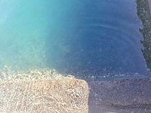海 空の画像(ヤシの木に関連した画像)