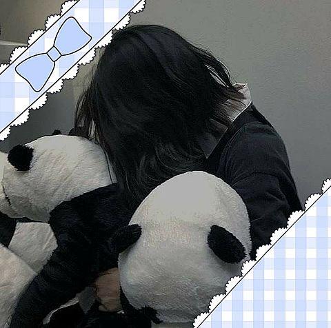 パンダの画像(プリ画像)