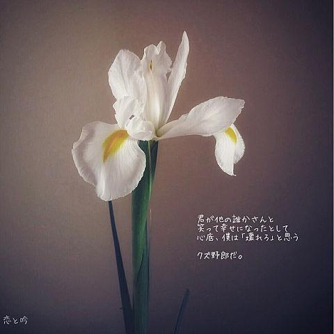 恋と吟/Mrs.GREEN APPLEの画像(プリ画像)