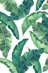ハワイアンの画像(ハワイアンに関連した画像)