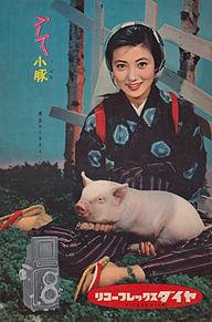 vintage adの画像(浅丘ルリ子に関連した画像)