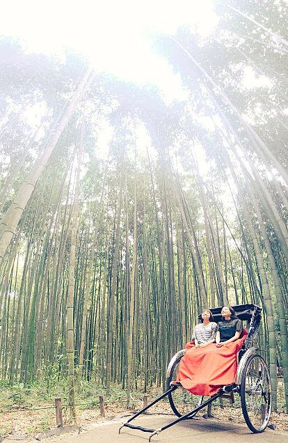 広瀬すず、大原櫻子の画像(プリ画像)