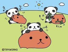 パンダとカピ♡♡の画像(プリ画像)