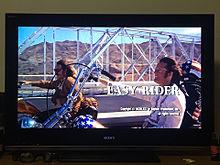 easy riderの画像(MOVIEに関連した画像)