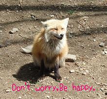Don't worryの画像(自分磨きに関連した画像)