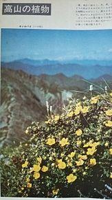 小学館図鑑写真×1962年の画像(自然に関連した画像)