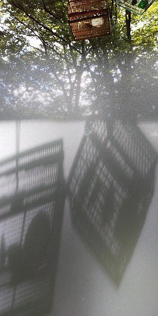 虫かごと影×2の画像(プリ画像)
