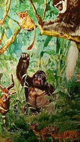 図鑑挿絵×1970年の画像(プリ画像)