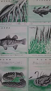 小学館図鑑挿絵×1970年