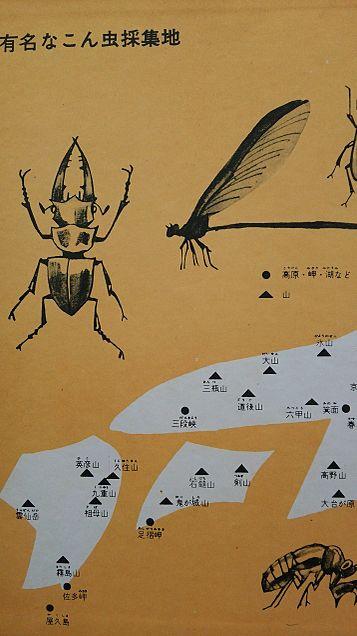 小学館図鑑挿絵×1962年の画像 プリ画像