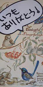 オーストラリアみやげ×2005年の画像(オーストラリアに関連した画像)
