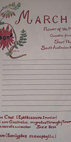 オーストラリアみやげ×2005年/3月の画像(オーストラリアに関連した画像)
