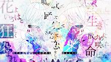撫子色ハート / ユリイ・カノンの画像(加工に関連した画像)