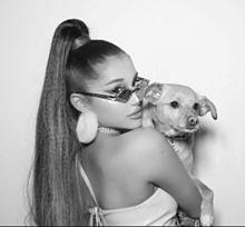 Ariana Grande♥️Katy Perry♥️の画像(KatyPerryに関連した画像)