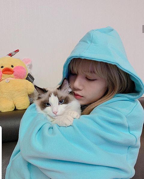 リサ♡の画像(プリ画像)