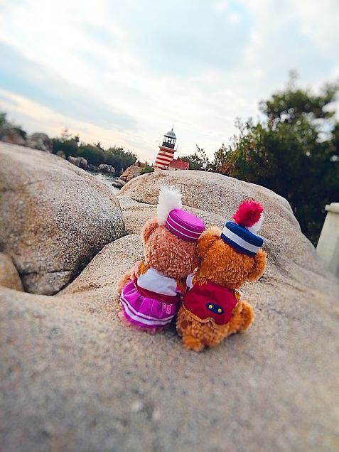 Duffy Disney Sea couple♡の画像(プリ画像)