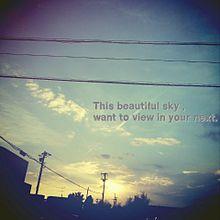 この綺麗な空を、君の隣で眺めたい。の画像(プリ画像)
