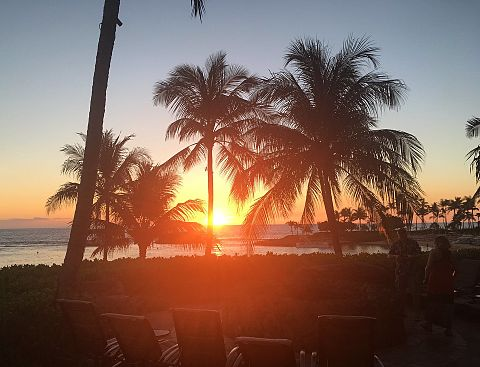 Hawaiiの画像(プリ画像)