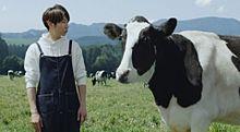相葉くん新CM!の画像(嵐 情報に関連した画像)