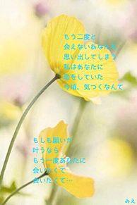 気づいた想いの画像(おしゃれ 待ち受け 花に関連した画像)