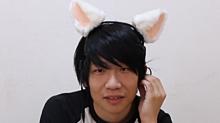 猫耳のエイちゃん