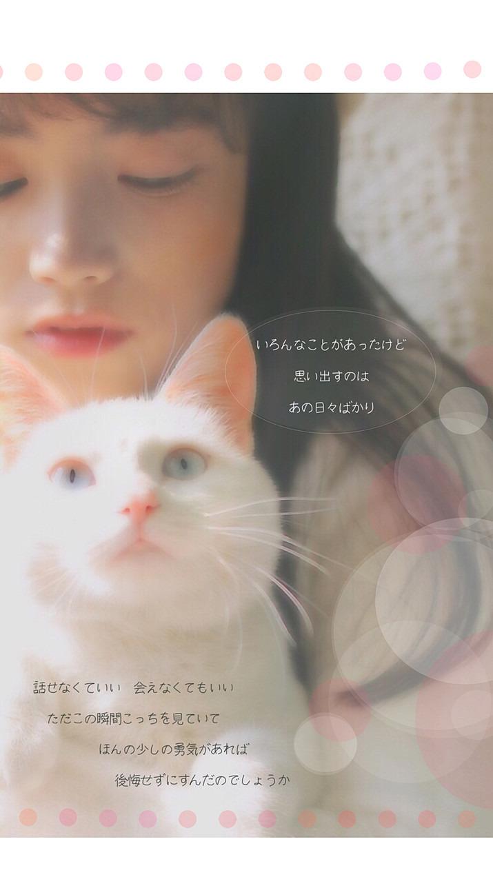猫とアレルギー 73889716 完全無料画像検索のプリ画像 Bygmo