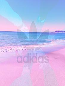 アディダスの画像(靴に関連した画像)