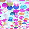 Umbrella プリ画像
