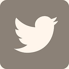 アイコン twitter