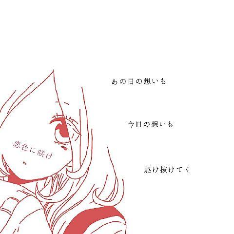 恋色に咲け/CHiCOwithHoneyWorksの画像 プリ画像