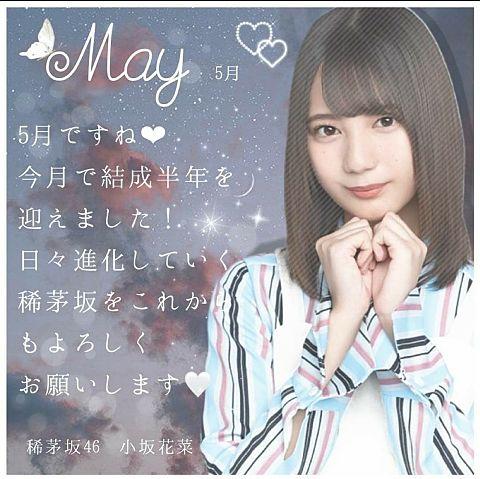 5月グリーティングカードカードの画像(プリ画像)