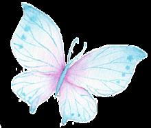 蝶 素材の画像17点 完全無料画像検索のプリ画像 Bygmo