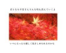 渡月橋〜君 想ふ〜/倉木麻衣の画像(倉木麻衣に関連した画像)