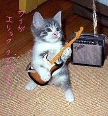 猫ギター弾くの画像(プリ画像)